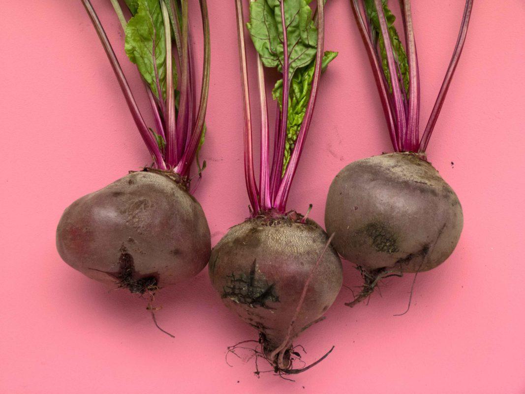 Aspre, dolci e fruttate tutte le ricette da fare con gli estrattori di succhi - 2021 - estrattori di succhi